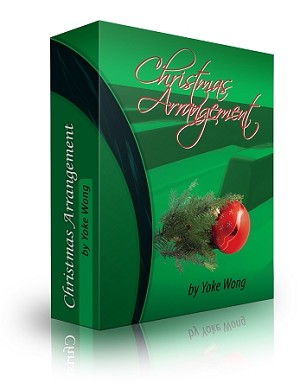Christmas Arrangement Piano Lessons (Downloadable)