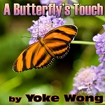 A Butterfly's Touch